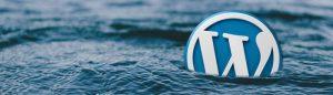 Kako odabrati pravu WordPress temu?
